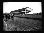 Horse track grandstand