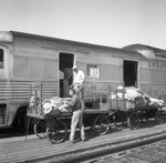 Transferring mail and baggage from Train 32 to Train 4 at Shelby, Montana by Michael J. Denuty