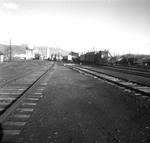 Camas Prairie yard, East Lewiston, ID by Michael J. Denuty 91-10