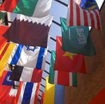 flags_30 by EWU