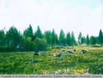 Scabland meadow pasture by Otis W. Freeman