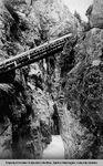 Z Canyon Cliffs by Otis W. Freeman