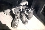 Cat in Army boots by Robert Gillette