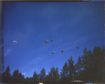 555th Parachute Infantry troops on a training jump in the Umatilla National Forest by United States. Army Air Forces