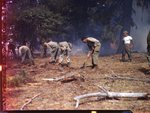555th Parachute Infantry members shoveling around fire by Edgar W. Weinberger and United States. Army Air Forces