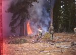 555th Parachute Infantry troop working near forest fire by Edgar W. Weinberger and United States. Army Air Forces