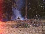 555th Parachute Infantry training mission near forest fire by United States. Army Air Forces