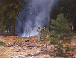 555th Parachute Infantry member working near forest fire with an axe by United States. Army Air Forces