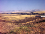 Pendleton, Oregon as seen from Pendleton Army Air Base by Edgar W. Weinberger and United States. Army Air Forces