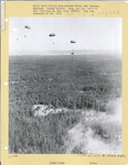 555th Parachute Infantry troops above a forest with parachutes deployed by United States. Army Air Forces