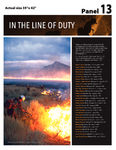 In the Line of Duty by National Smokejumper Association